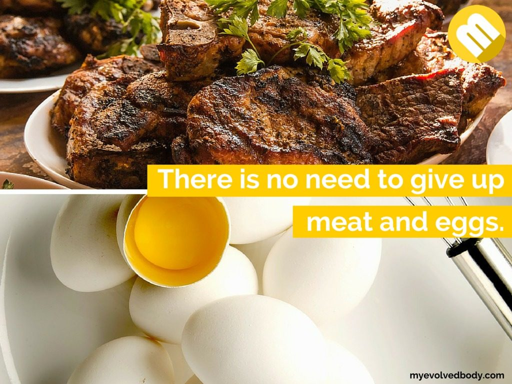 paleo diet includes meat and eggs